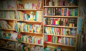 vintage syle photograph book shelves