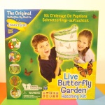 insect lore Live_Butterfly_Garden biology entomology children toy resource classroom